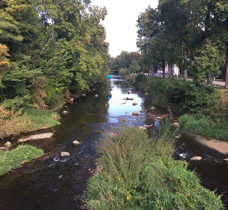 Bild 8 Blick auf die Brigach in Donaueschingen