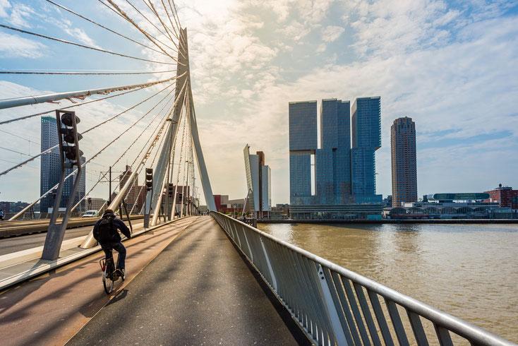 Erasmus-Brücke; Detektei Niederlande, Detektiv Niederlande, Privatdetektiv Niederlande