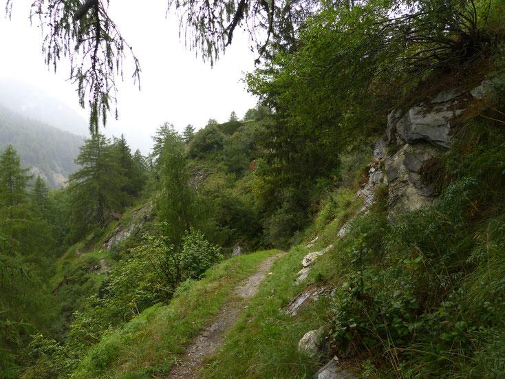 Smal toegangspaadje tot Val Sinestra