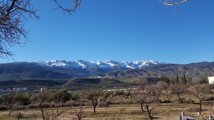 Blick vom Stellplatz auf die schneebedeckten Gipfel der Sierra Nevada