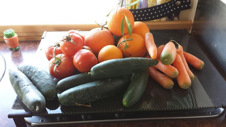 Gemüseeinkauf im Wert von 150 Dirham also knapp 1,50 EUR. Da macht Einkaufen Spass