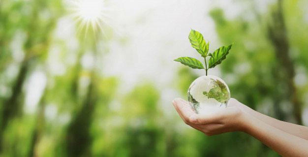 EcoFactory duurzame schoonmaak vanzelfsprekend