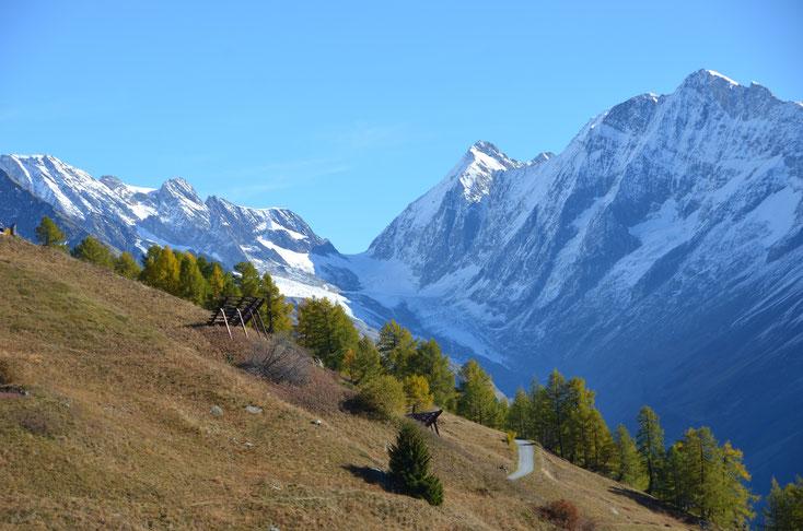 Im Herbst, etwas oberhalb Lauchernalp, Sicht auf Lötschenlücke.