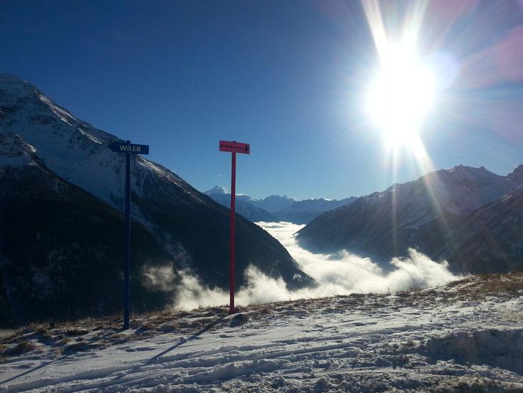 Winterwanderweg (und Schlittelpiste ;-)) nach Wiler, gerade unterhalb Bergstation Gondelbahn