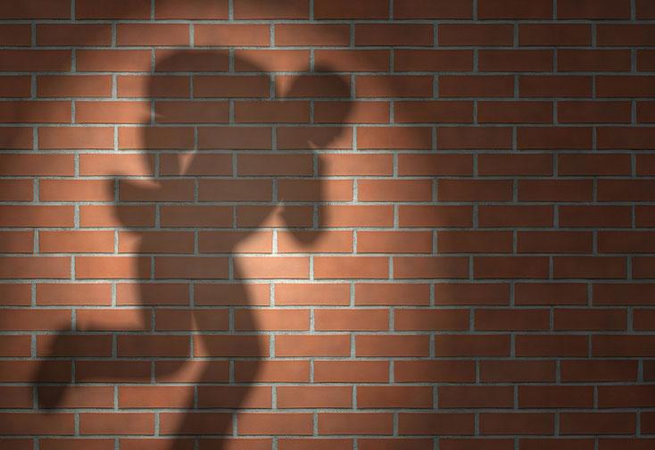 Schatten eines Einbrechers mit Diebesgut auf dem Rücken an einer Wand; Kurtz Detektei Hamburg