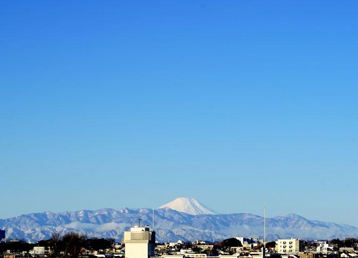 2019/02/01 Mr.Adachi
