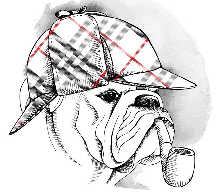 Detektiv-Hund; Detektei Mönchengladbach, Detektiv Neuss, Privatdetektiv Hilden, Patrick Kurtz