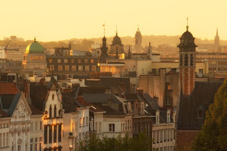 Brüssel; Wirtschaftsdetektei Belgien, Detektei Brüssel, Detektiv Antwerpen, Privatdetektiv Gent