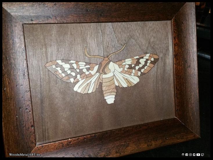 WoodnMetalART Scrollsaw Dekupiersäge Holzbild Motte Furnier Aurora