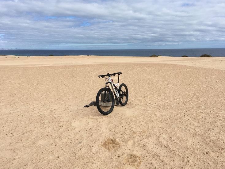 10 x 2,5 km große Dünenfläche im NO der Insel bei Corralejo.