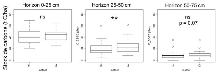 Stocks de carbone dans les 3 horizons (0-25, 25-50, 50-75 cm) aux instants t1 et t2