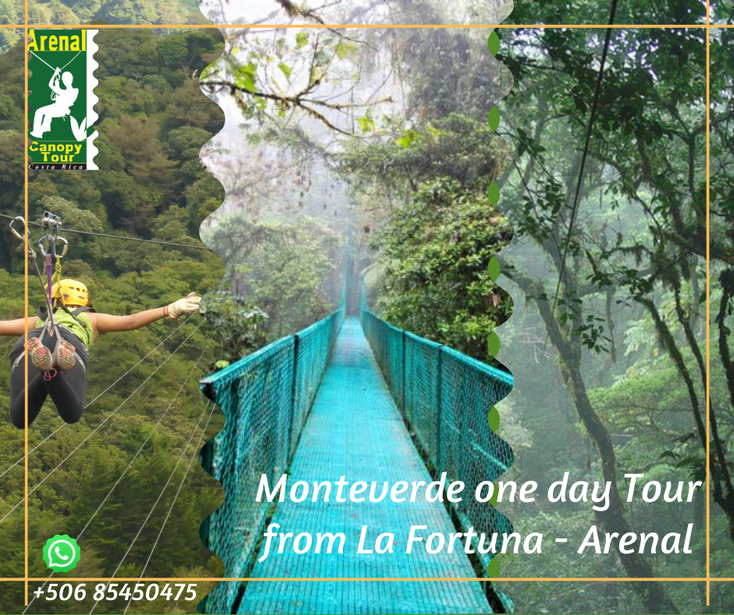 From your Hotels in La Fortuna, all inclusive package to visit Monteverde in one day from La Fortuna
