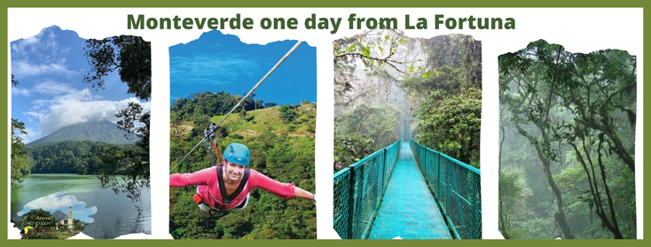Day tour to Monteverde from La Fortuna