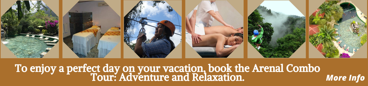Combo Tour:  Canopy + Massage + Hot Springs