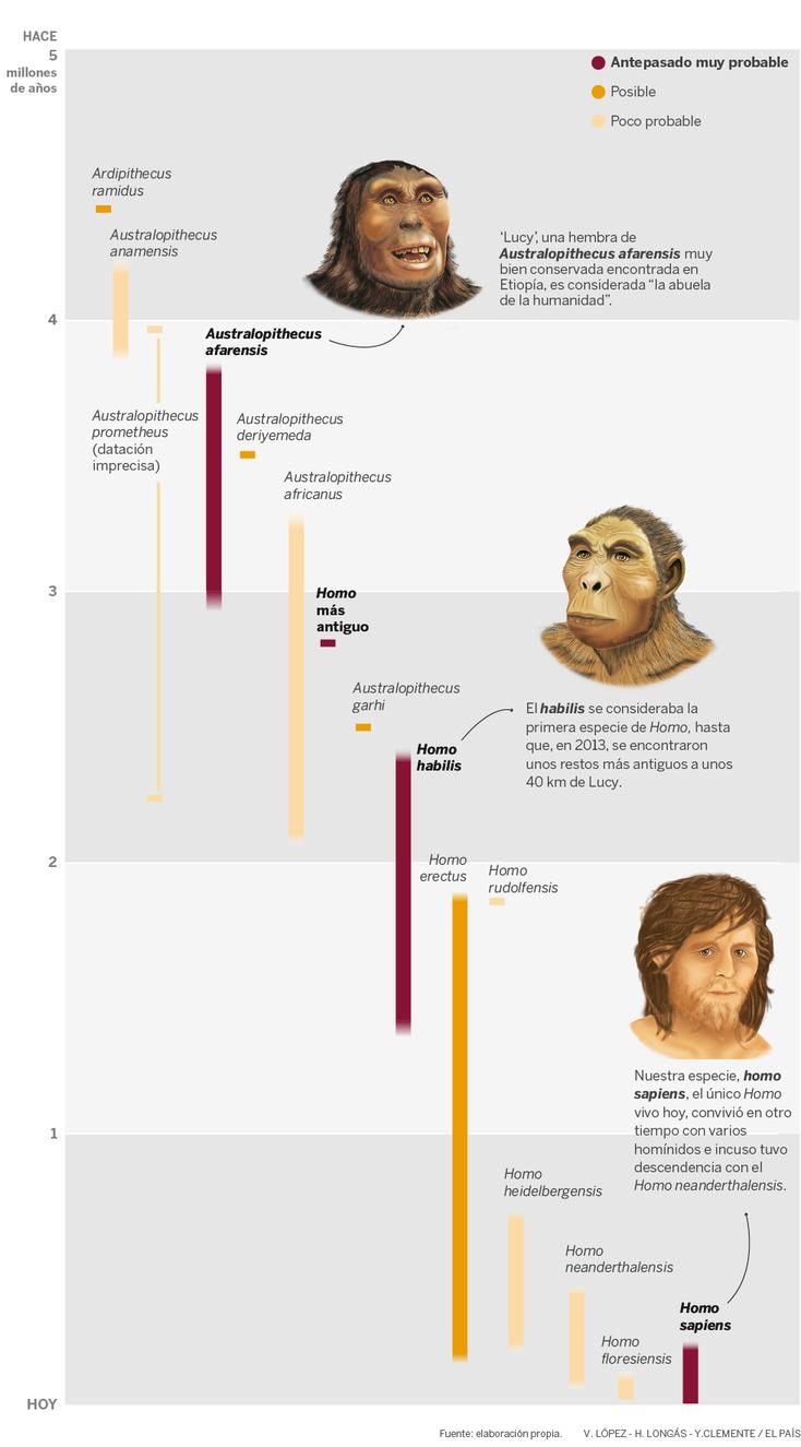 EVOLUCIÓN DE LA HUMANIDAD.