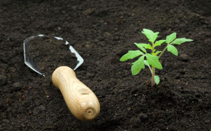 грунт растительный,почвогрунт,торф с доставкой