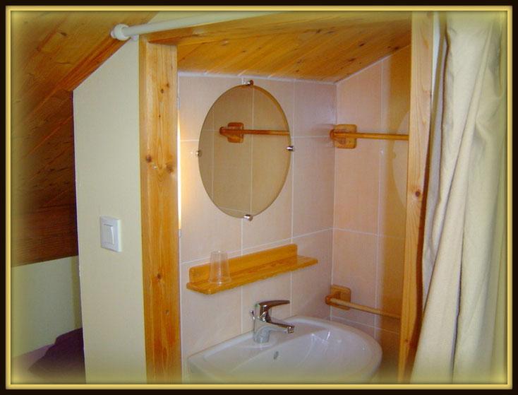 salle d'eau privée ,douche /vasque...