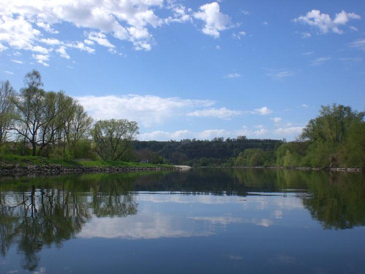 Der Main vom Kanu aus