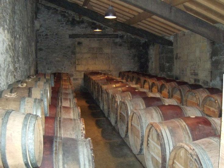 10 vins à l'honneur en février à La Cave Saint Vincent