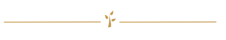 Bioaussizilien