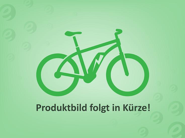Stromer ST1 e-Bike 25 km/h - 2017