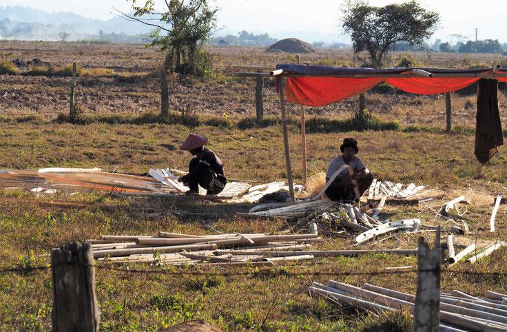 Die beiden erzeugen Bambusmatten für den Hausbau