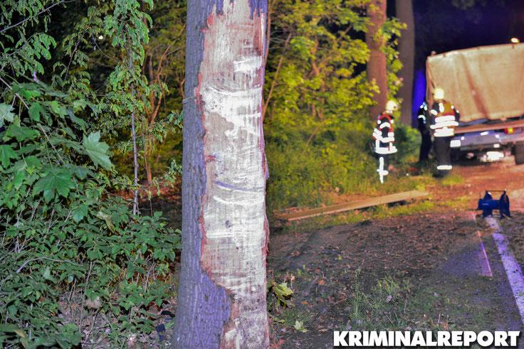 Der Fahrer pralle ungebremst gegen einen Baum.|Foto: Kevin Wuske