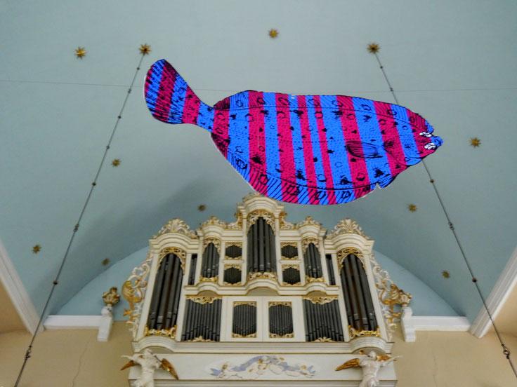 orgel, fisch, scholle