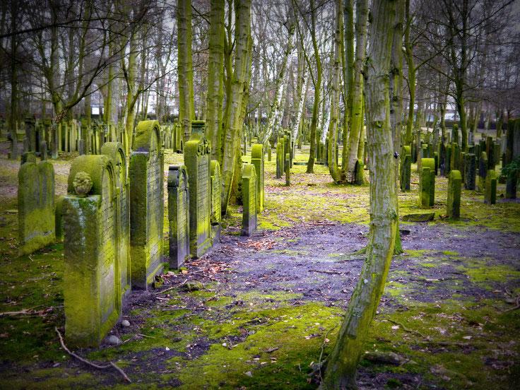 jüdischer Friedhof Königstraße Hamburg, Friedhof, letzte Ruhe, Tod