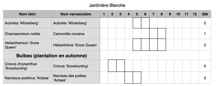 Composition possible pour une jardinière de fleurs blanches