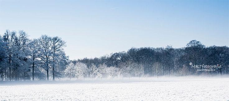 Weiland met sneeuw aan de rand van het bos. Landschaps fotografie