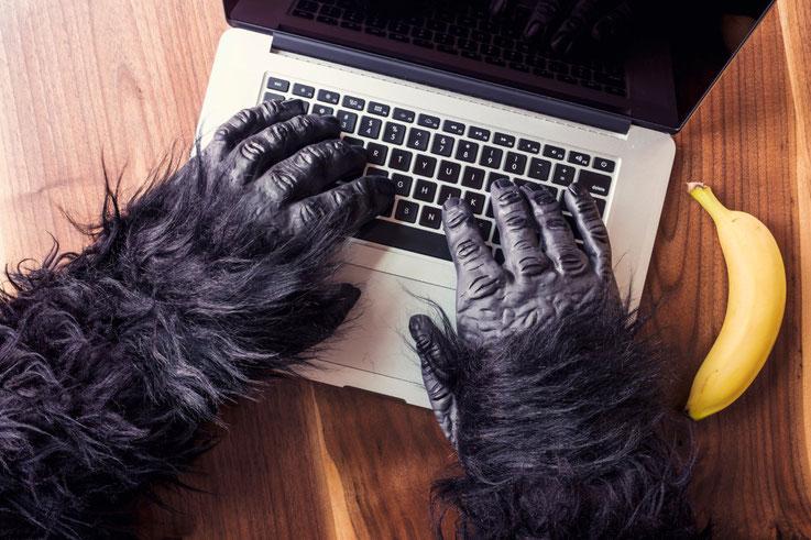 Affenhände auf einer Laptoptastatur