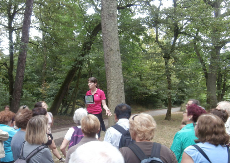 Randonnée-visite dans la forêt de Fontainebleau