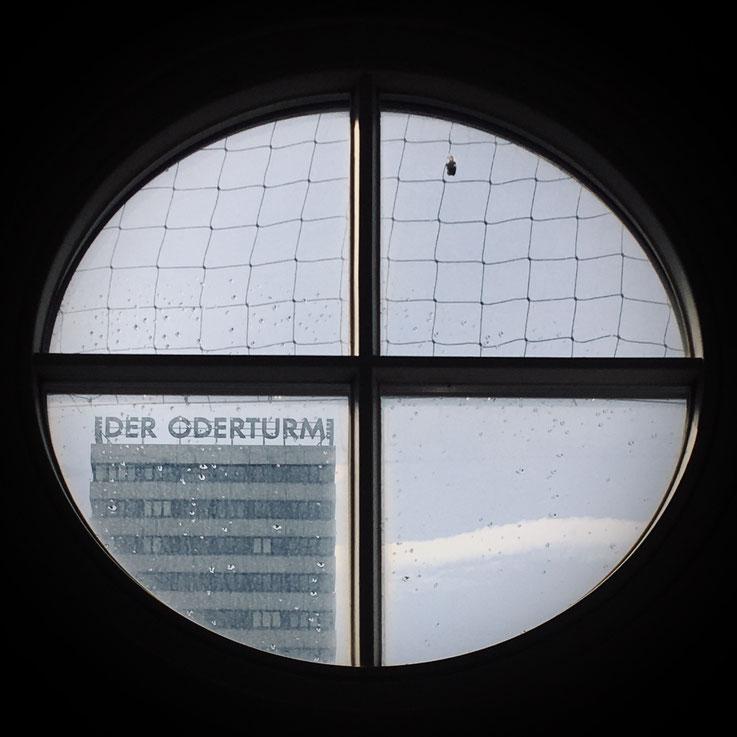 Ausblick aus der Uni-Bibliothek der Viadrina zum Oderturm in Frankfurt (Oder). / Foro: Peggy Lohse
