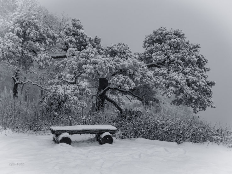 Winterrruhe am Gempen