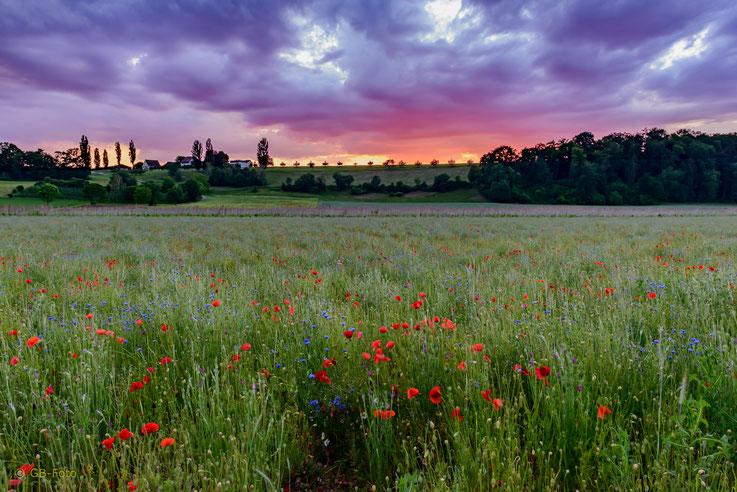 Kurz nach Sonnenuntergang verfärbte sich der Himmel