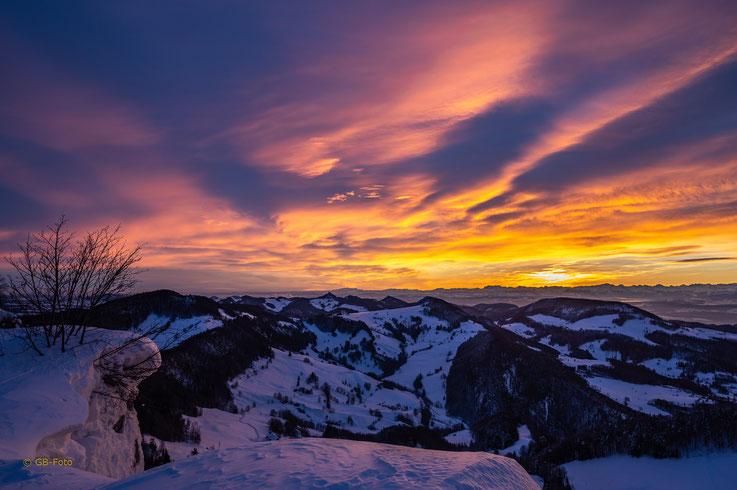 Morgenglühen auf dem Vogelberg