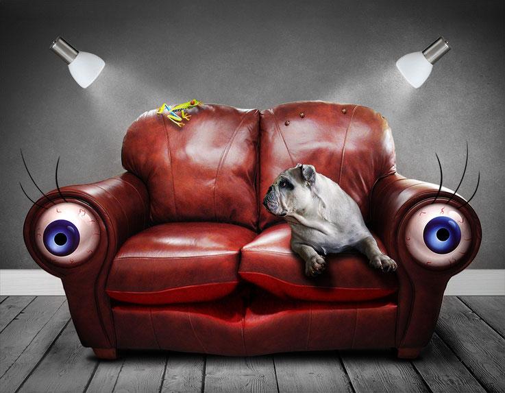 Traumsymbol - Hund