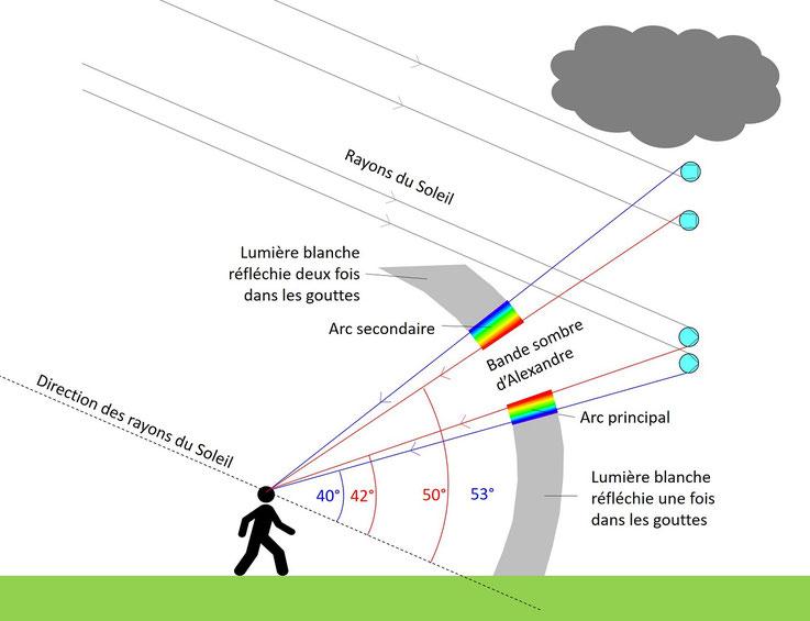 Schéma général de l'arc-en-ciel (pluie, arc principal, bande sombre d'Alexandre, arc secondaire)