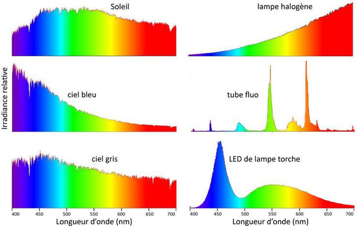 Spectres d'émission de différentes sources de lumière : soleil, ciel bleu, ciel gris, lampe halogène, tube fluo, lampe à LED