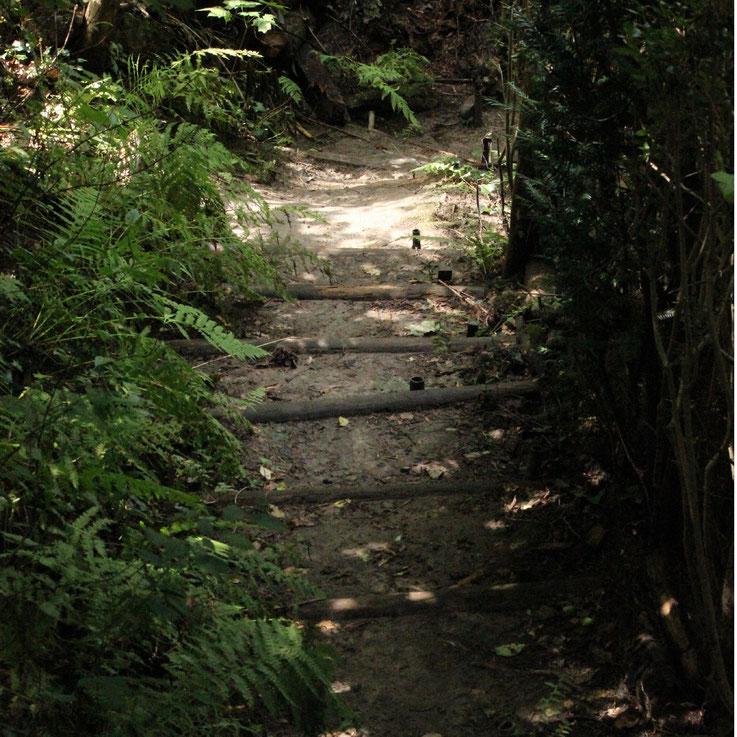 Der Weg zum Ziel! Um zum Ziel zu kommen, ist es wichtig, dieses im Auge zu behalten und sich nicht von störenden und hinderlichen Aspekten vom Weg abbringen zu lassen. Ein Blick zurück ist immer ein Stehenbleiben, ein Straucheln und eine Unterbrechung!