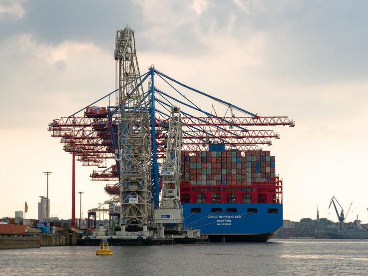 """Der TCT - Tollerort - Container - Terminal mit 2 Schwimmkränen der HHLA und """"Cosco Shipping Leo"""""""