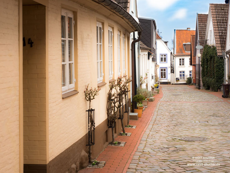 Typisch für die Schleswiger Altstadt : Die Rosenstöcke an den Häsern. Im Sommer ist das sicherlich ein besonderer Blickfang.