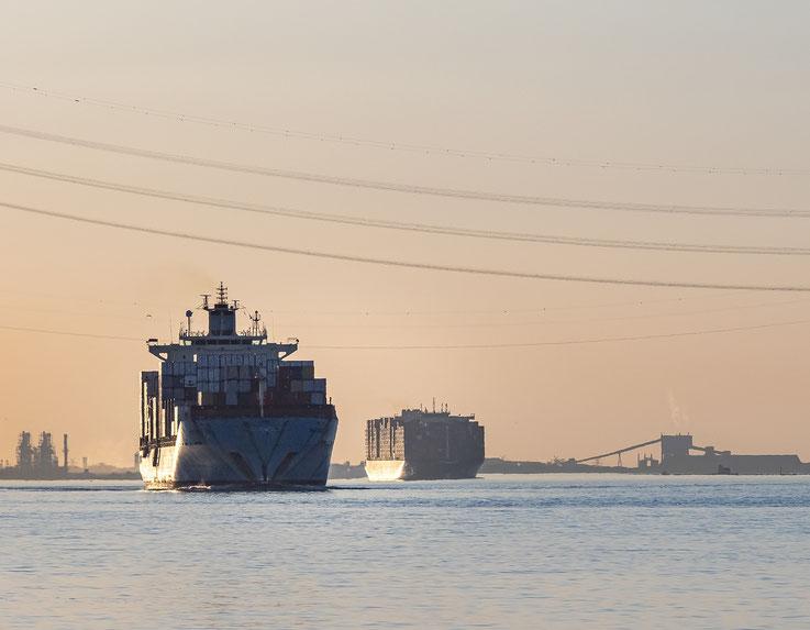"""Die """"Maersk Bali"""" und HMM Gaon"""" im Abendlicht aus der Unterelbe"""