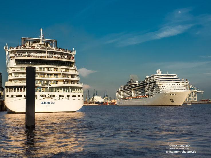 """Danach lief die """"MSC Preciosa"""", hier rechts im Bild,  aus Hamburg aus"""