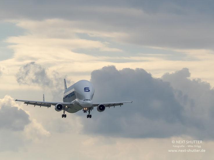 "Ein Airbus ""Beluga"" im Landeanflug."