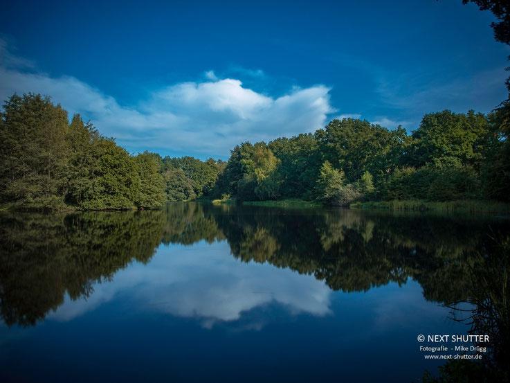 Der Teich in der Volksdorfer Horst