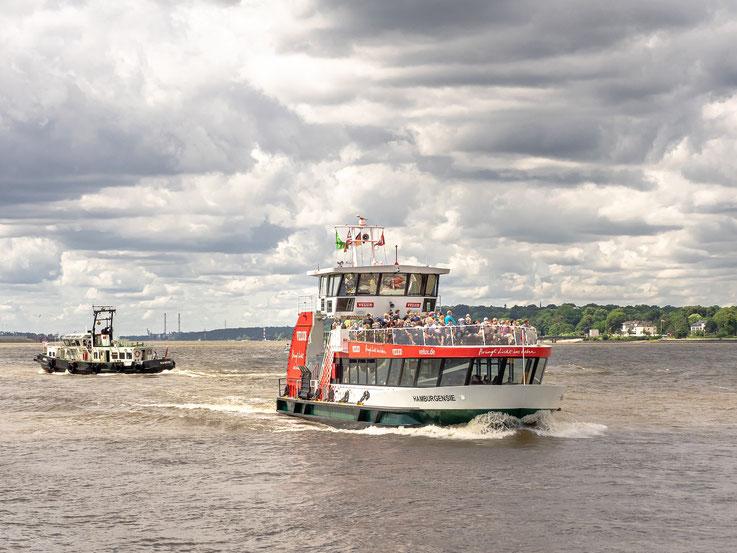 Die Linie 62 der HADAG - auch genannt die kleine Hafenrundfahrt per ÖPNV. Sie verkehrt zwischen den Landungsbrücken und Finkenwerder