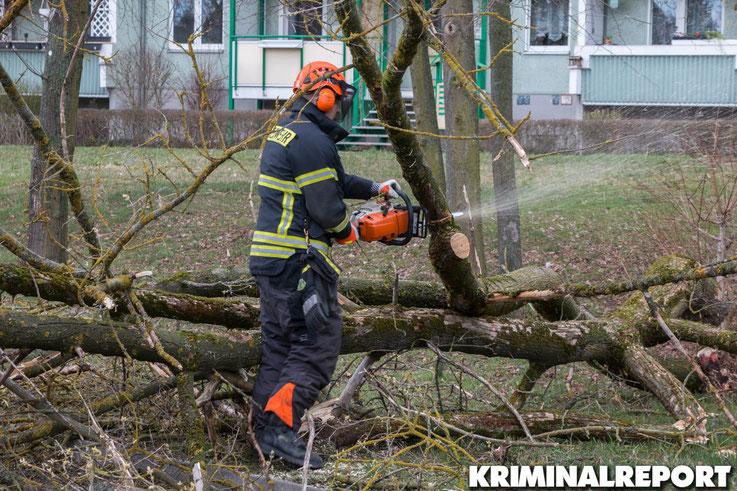 Einsatzkräfte der Freiwilligen Feuerwehr Hönow in der Jänschwalder Straße in Hellersdorf.|Foto: Christopher Sebastian Harms