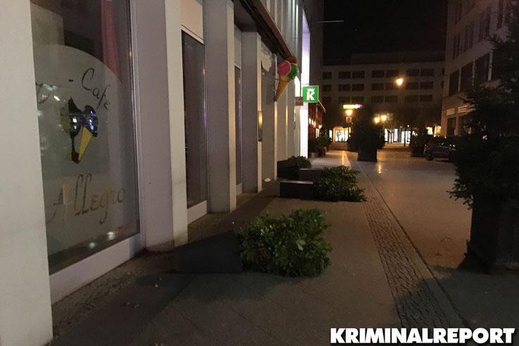 Die Täter warfen Innen und Außen mehrere Blumenkästen um. Foto: Privat
